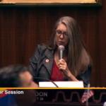 Rep. Jennifer Longdon speaking on House floor - May 2019